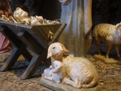 WeihnachtsKrippe-und-HolzFiguren--Schafe-DSCN1079