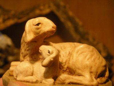 WeihnachtsKrippe-und-HolzFiguren--Schafe-DSCN1060